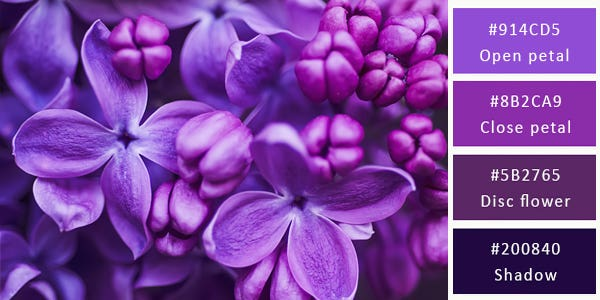 120 Stunning Color Combinations For Your Next Design Image 17