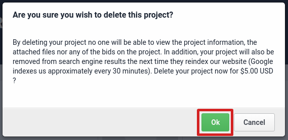 Delete project confirmation from the project view page