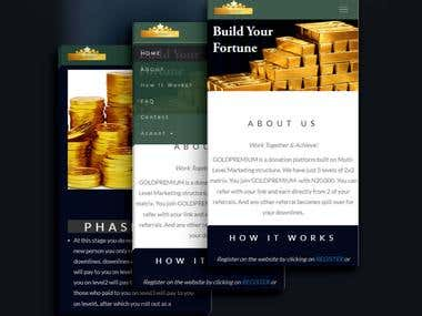 This is a 2X2 Matrix website using multi level marketing in Nigeria.