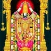 Fotografia de profil a utilizatorului chkeerthana25