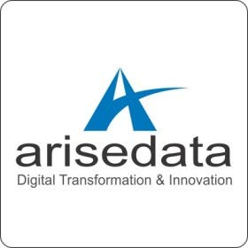 Profile image of arisedata20