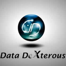 datadexterous - India