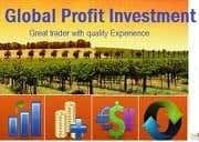 Profile image of globalinvestment